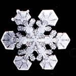 Snowflake 2
