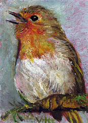 Robin, singing, hope, feathers, poem, emily dickinson